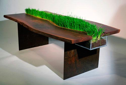 Газон на столе