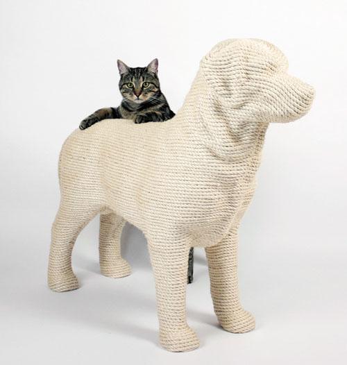 Собака для кота