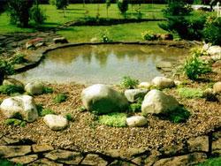 Создание каменистого сада (рокария) своими руками