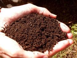 Удобрения — микроудобрения, комплексные и органические удобрения, внесение удобрений, компост