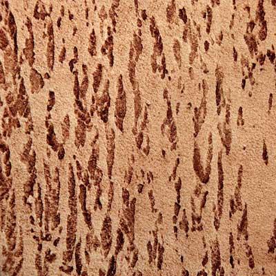 Фото декоративной штукатурки Кора дерева