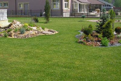 Подкормка газона, прокалывание и мульчирование почвы под газоном