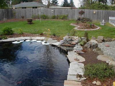 Уход за садовым водоемом