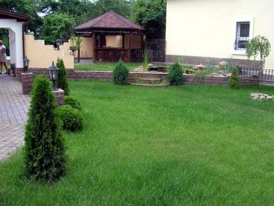 Стрижка газона на дачном участке