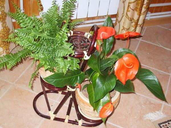 Подставка с цветами