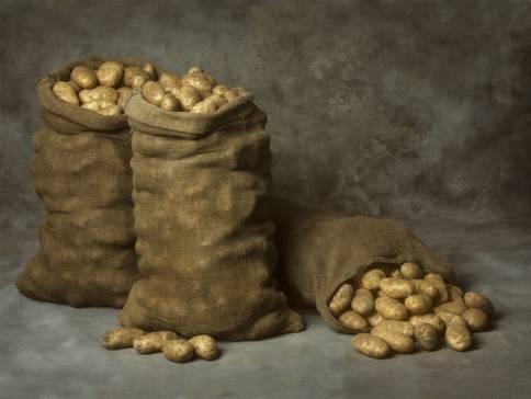 Советы дачников: как хранить картошку в квартире