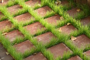 Экологическая тротуарная плитка