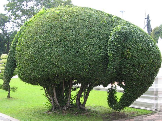 Топиарий слон
