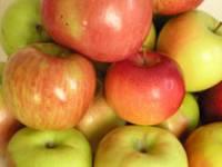 Рецепт Наливка яблочная