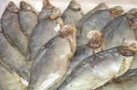 Фото Вяление и сушка рыбы в домашних условиях