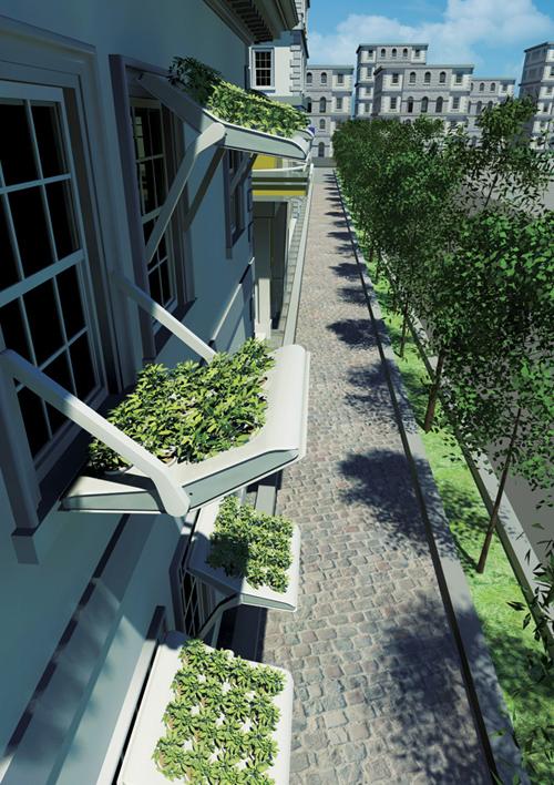 Herbow: сад за окном