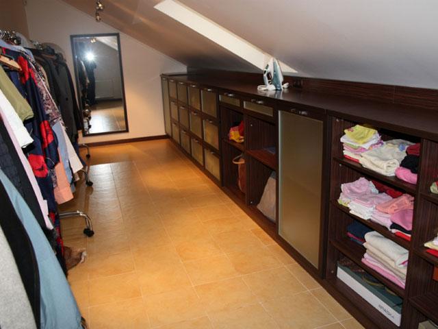 Фото вашингтония робуста в домашних условиях