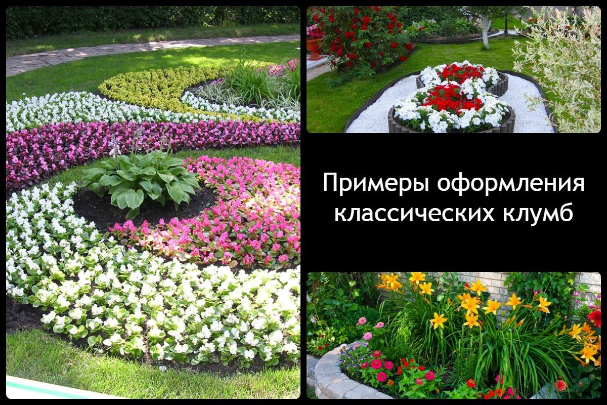 Цветники прямоугольной формы на даче своими руками
