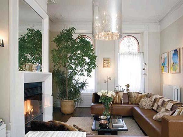 Большое дерево в гостиной с камином