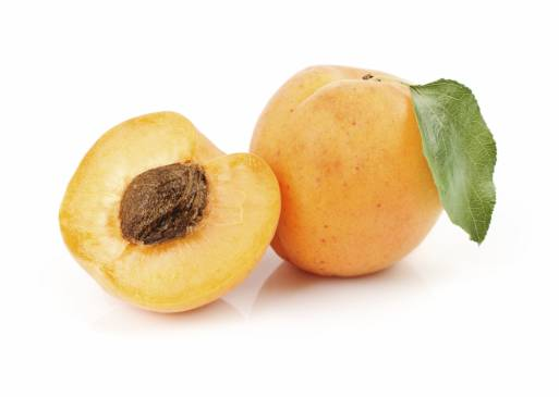 Абрикос ананасовий опис сорту