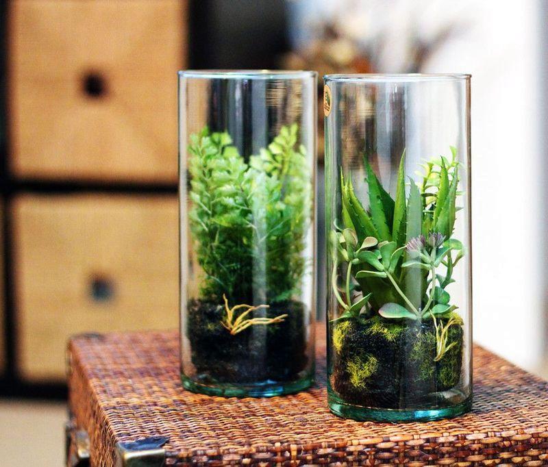 флорариум в стакане