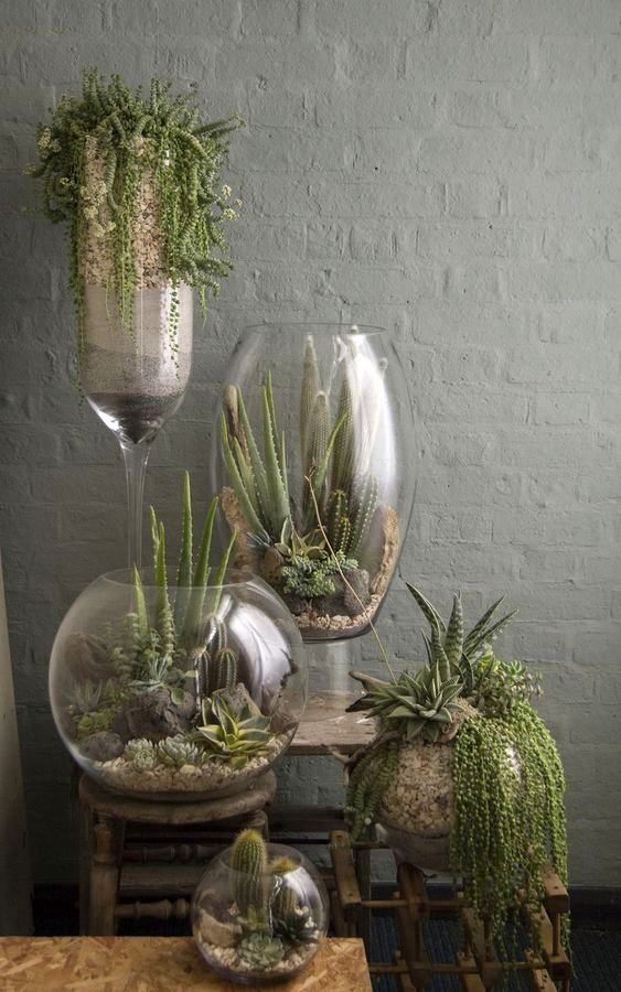 флорариумы в вазах