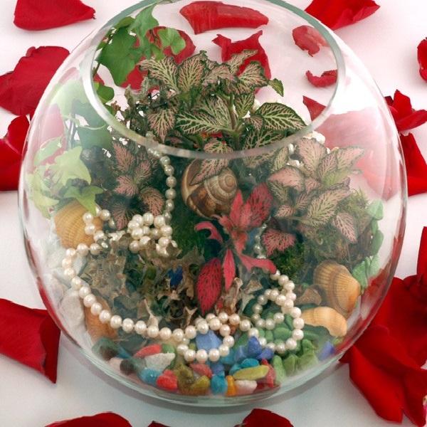 флорариум морское дно