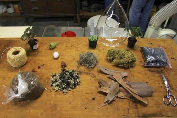 инструменты и материалы для флорариума