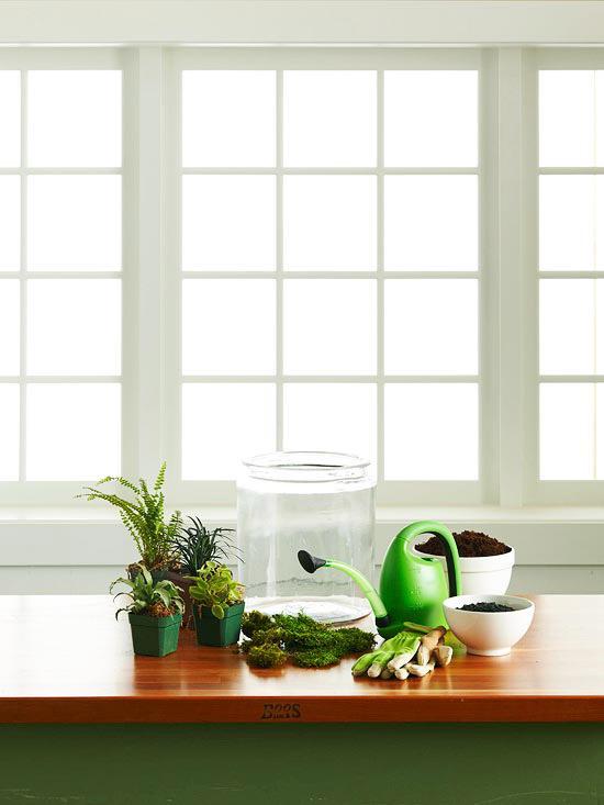 сосуд и растения на столе
