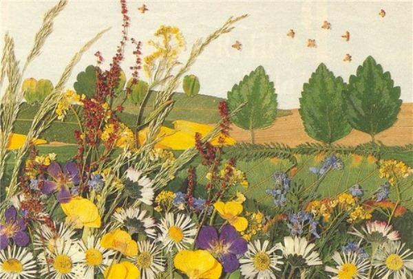 Картины из сухих цветов и листьев своими руками
